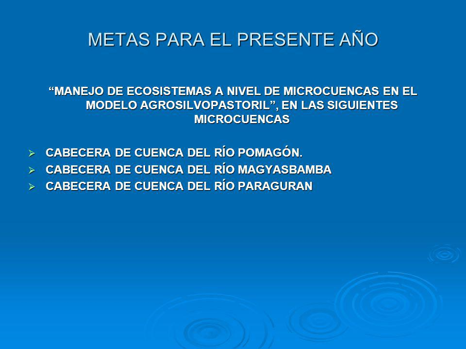 METAS PARA EL PRESENTE AÑO