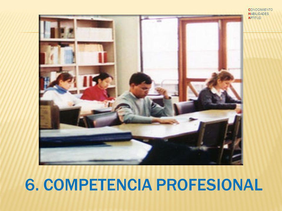 6. COMPETENCIA PROFESIONAL