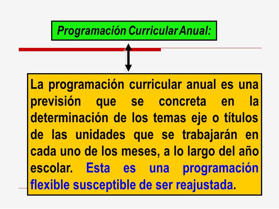 Programación Curricular Anual: