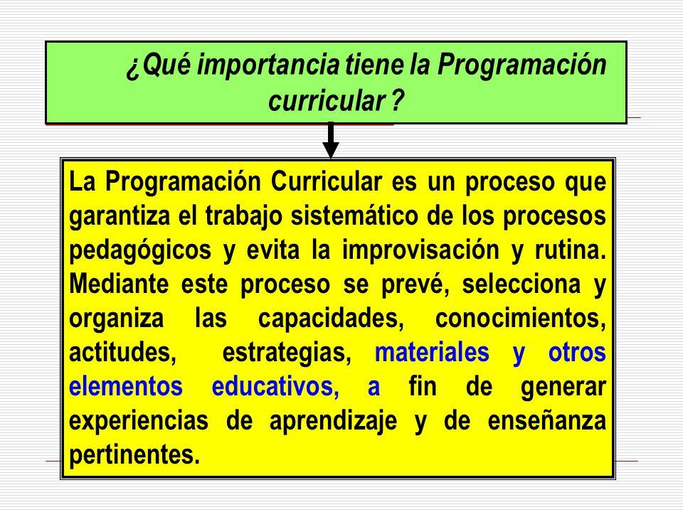 ¿Qué importancia tiene la Programación curricular