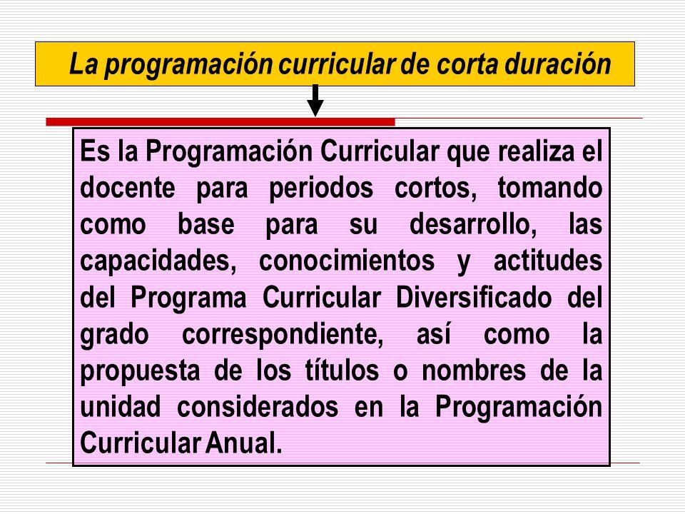 La programación curricular de corta duración
