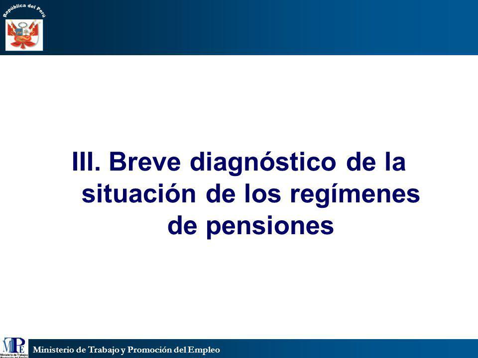 III. Breve diagnóstico de la situación de los regímenes de pensiones
