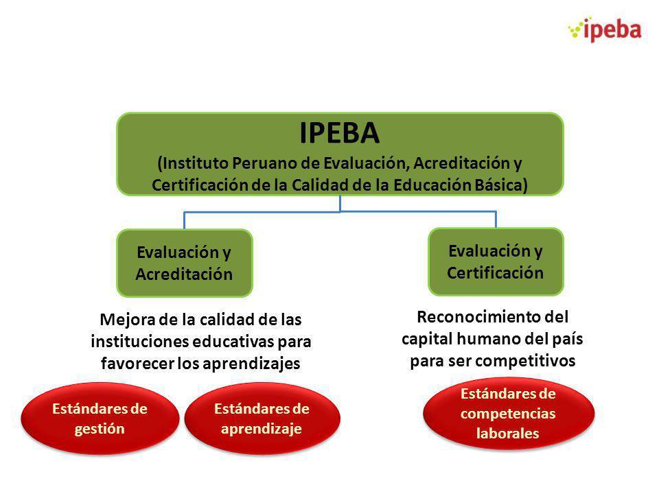 IPEBA (Instituto Peruano de Evaluación, Acreditación y Certificación de la Calidad de la Educación Básica)