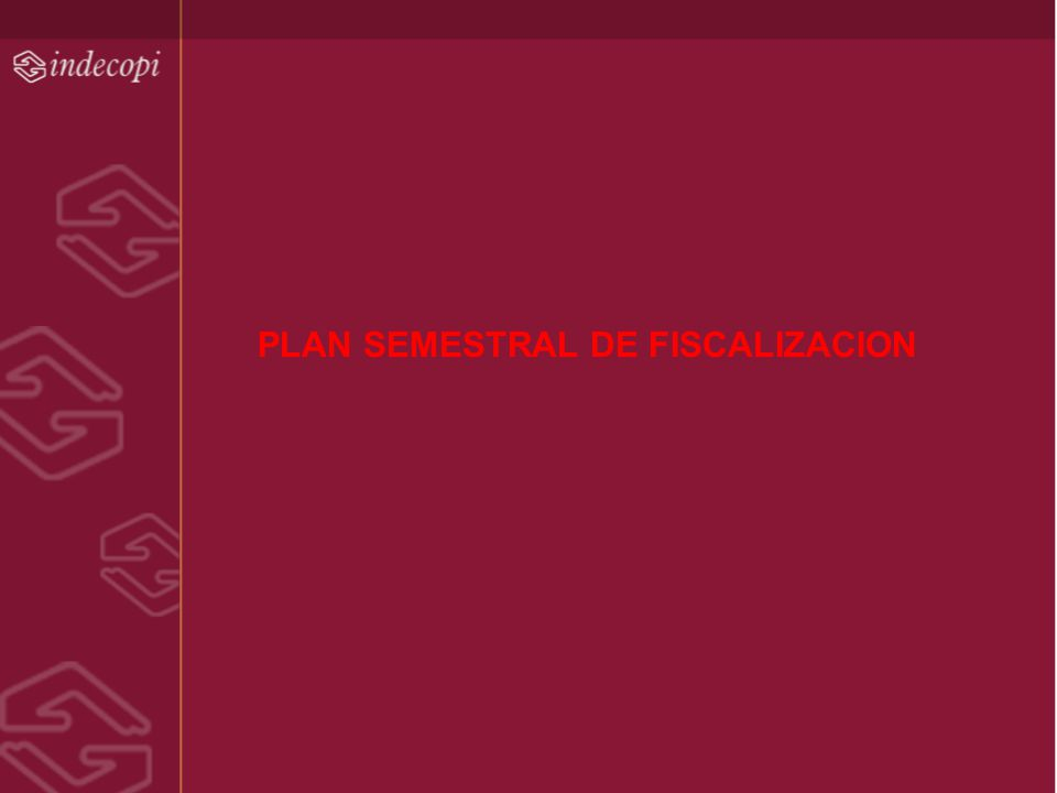 PLAN SEMESTRAL DE FISCALIZACION
