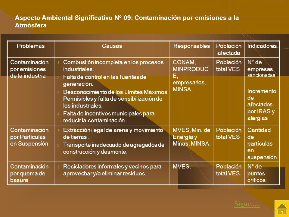 Aspecto Ambiental Significativo Nº 09: Contaminación por emisiones a la Atmósfera