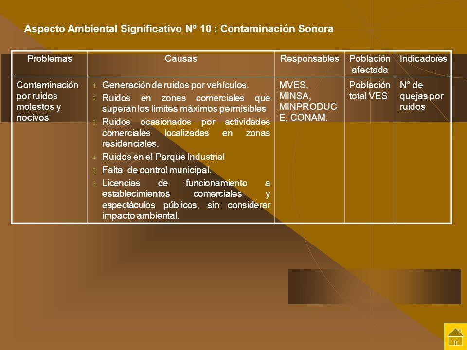 Aspecto Ambiental Significativo Nº 10 : Contaminación Sonora