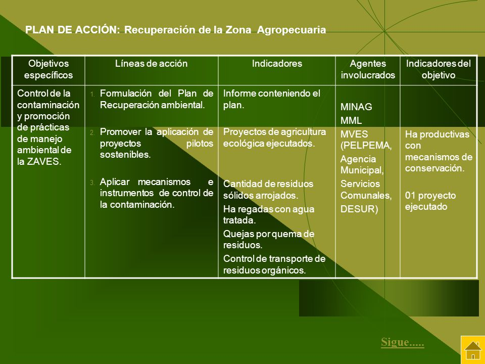 Sigue..... PLAN DE ACCIÓN: Recuperación de la Zona Agropecuaria