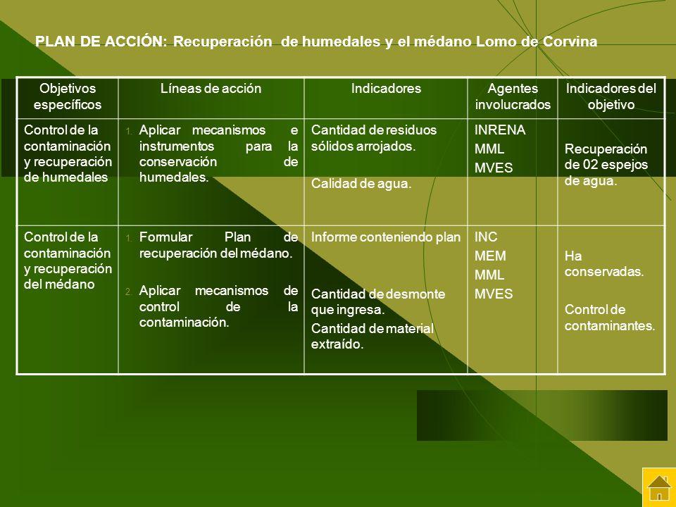 PLAN DE ACCIÓN: Recuperación de humedales y el médano Lomo de Corvina