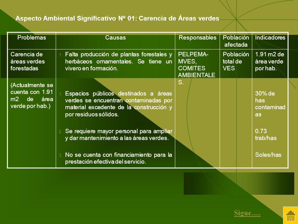 Aspecto Ambiental Significativo Nº 01: Carencia de Áreas verdes