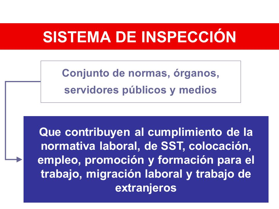 Conjunto de normas, órganos, servidores públicos y medios