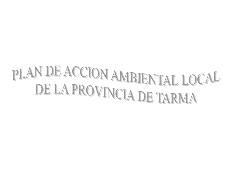 PLAN DE ACCION AMBIENTAL LOCAL DE LA PROVINCIA DE TARMA