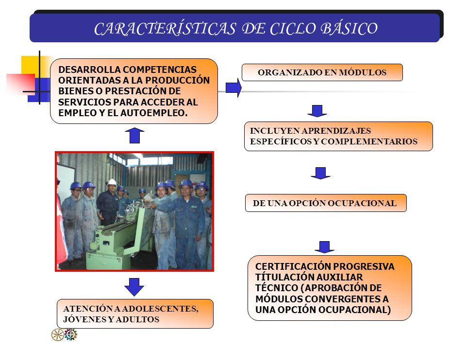 CARACTERÍSTICAS DE CICLO BÁSICO