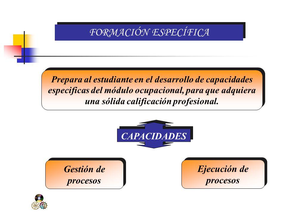 FORMACIÓN ESPECÍFICA CAPACIDADES Gestión de procesos