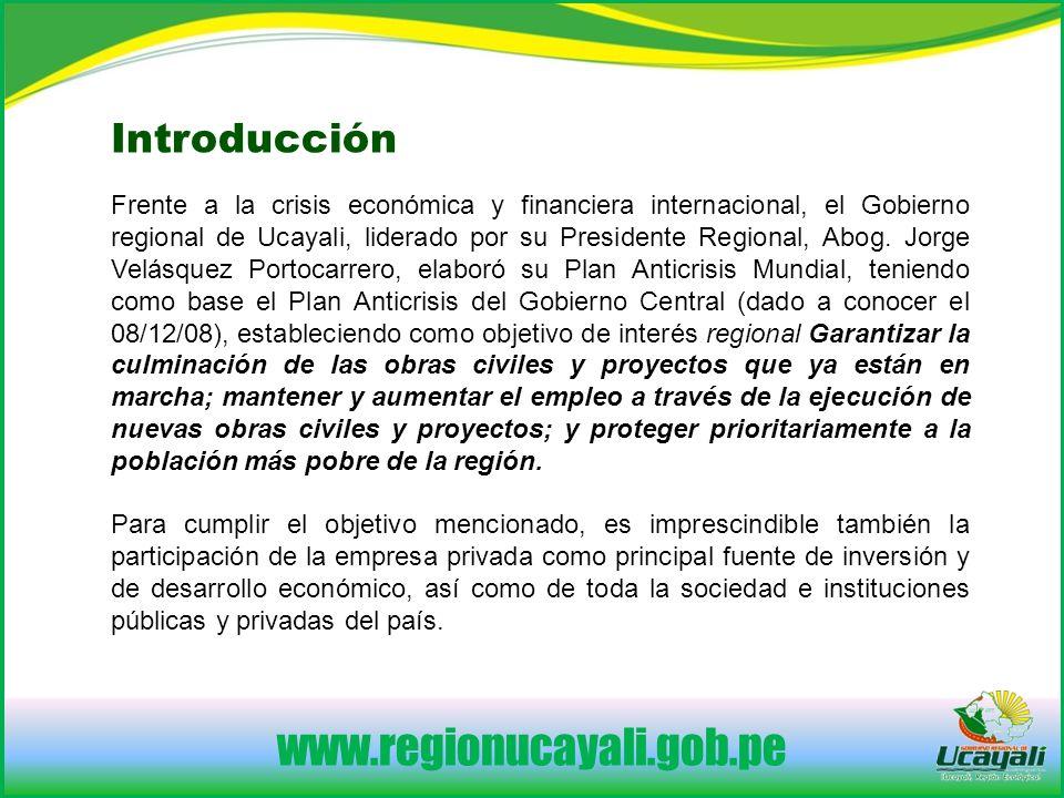 www.regionucayali.gob.pe Introducción