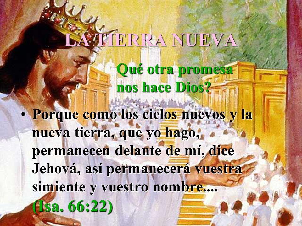 LA TIERRA NUEVA Qué otra promesa nos hace Dios