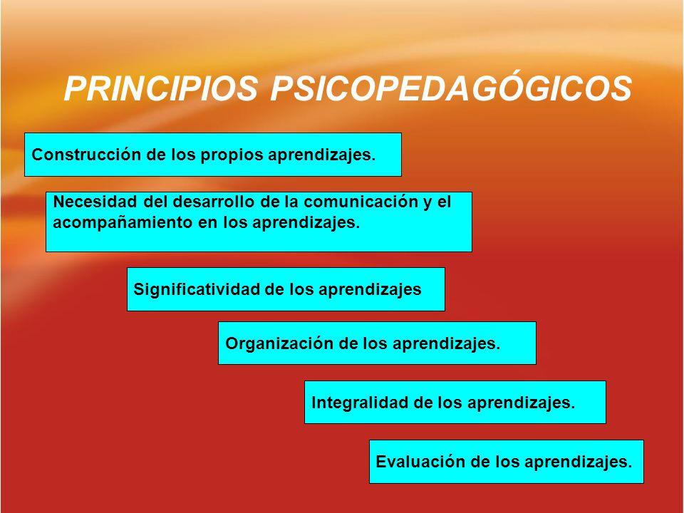 PRINCIPIOS PSICOPEDAGÓGICOS