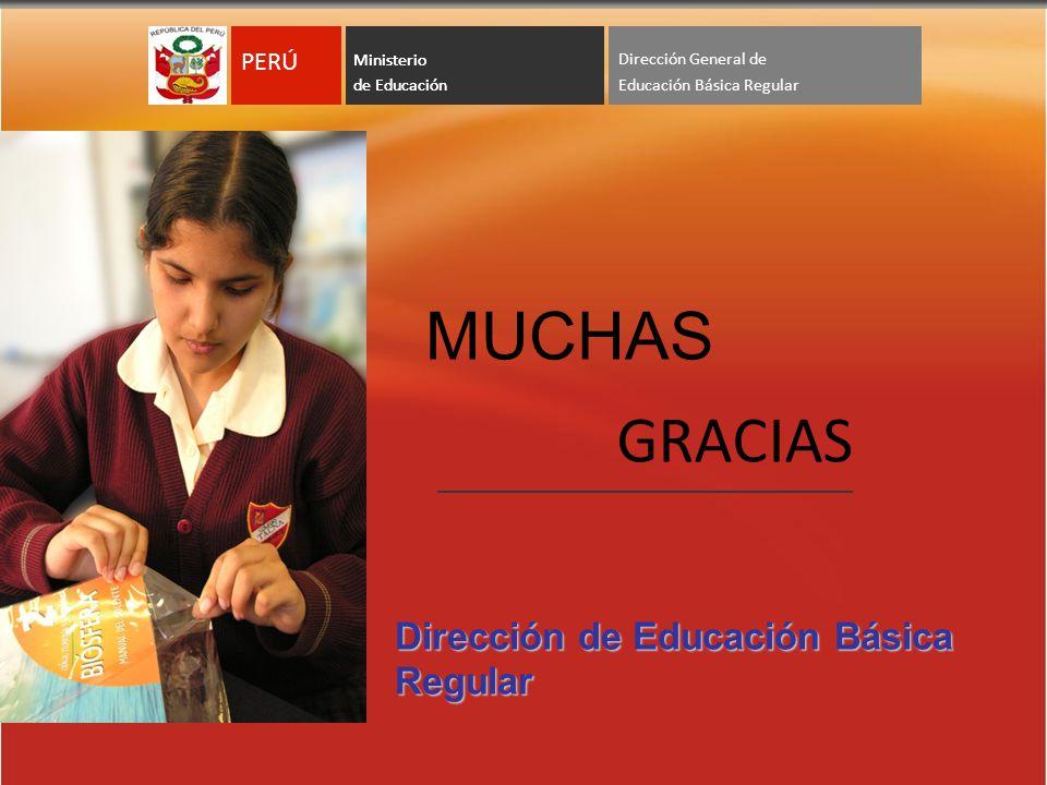 MUCHAS GRACIAS Dirección de Educación Básica Regular PERÚ