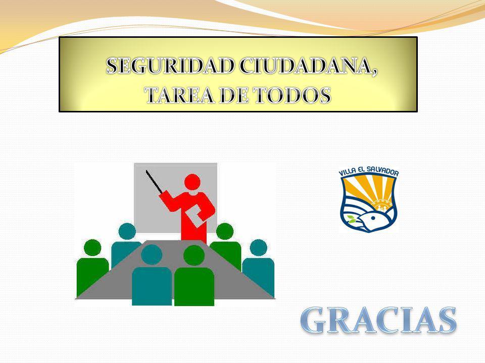 SEGURIDAD CIUDADANA, TAREA DE TODOS