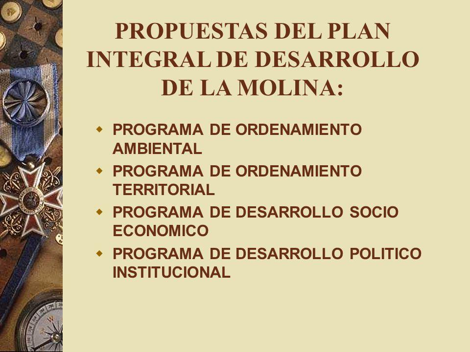 PROPUESTAS DEL PLAN INTEGRAL DE DESARROLLO DE LA MOLINA: