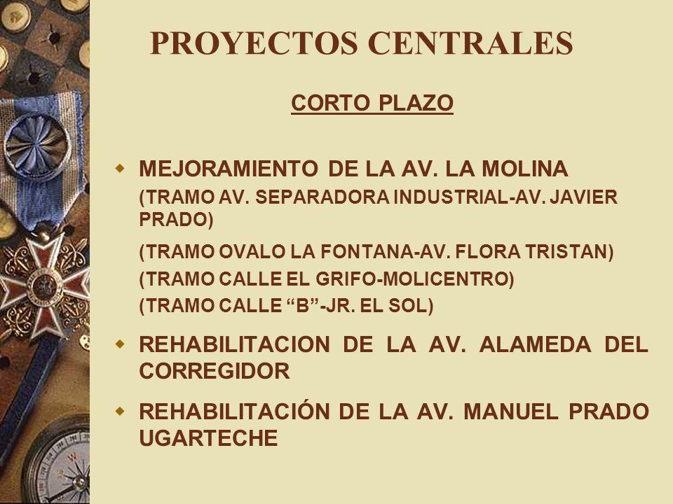 PROYECTOS CENTRALES CORTO PLAZO MEJORAMIENTO DE LA AV. LA MOLINA