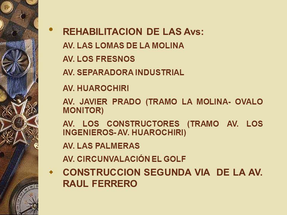 REHABILITACION DE LAS Avs: