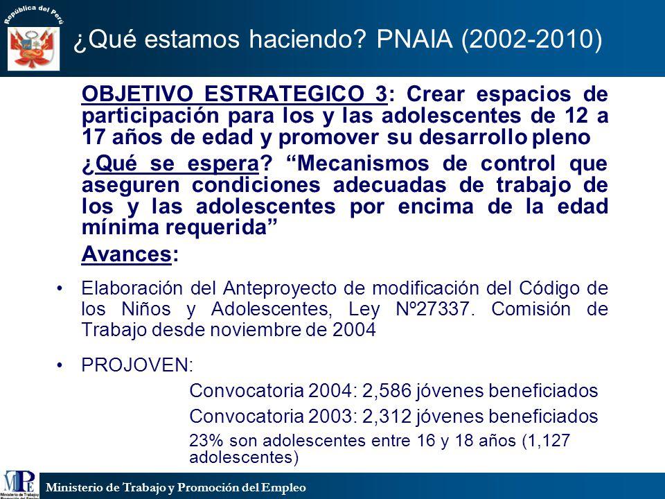 ¿Qué estamos haciendo PNAIA (2002-2010)