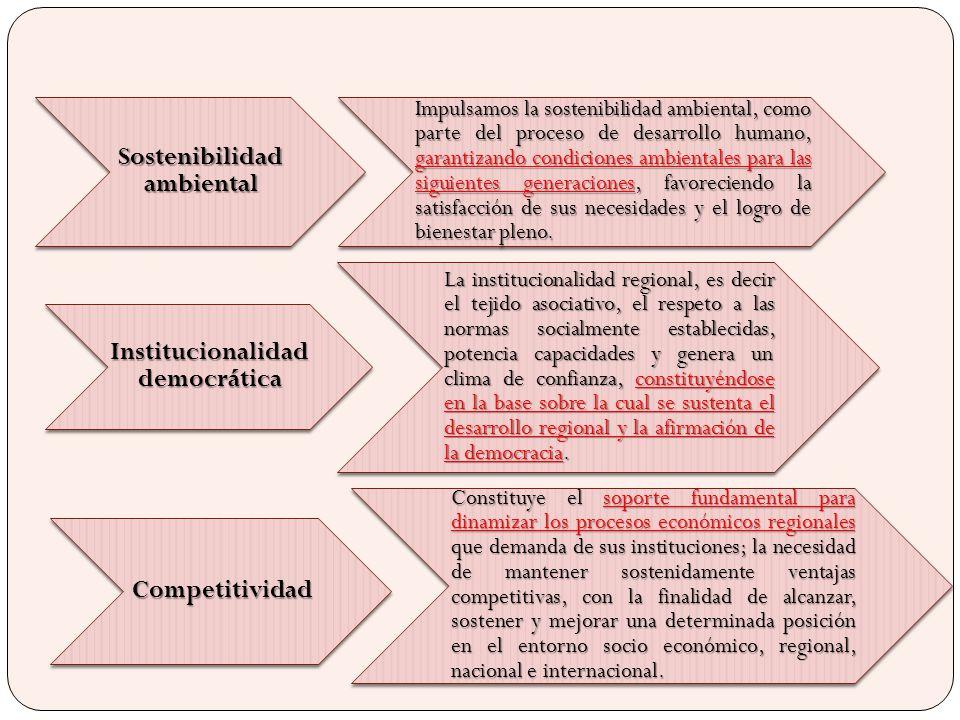 Sostenibilidad ambiental Institucionalidad democrática
