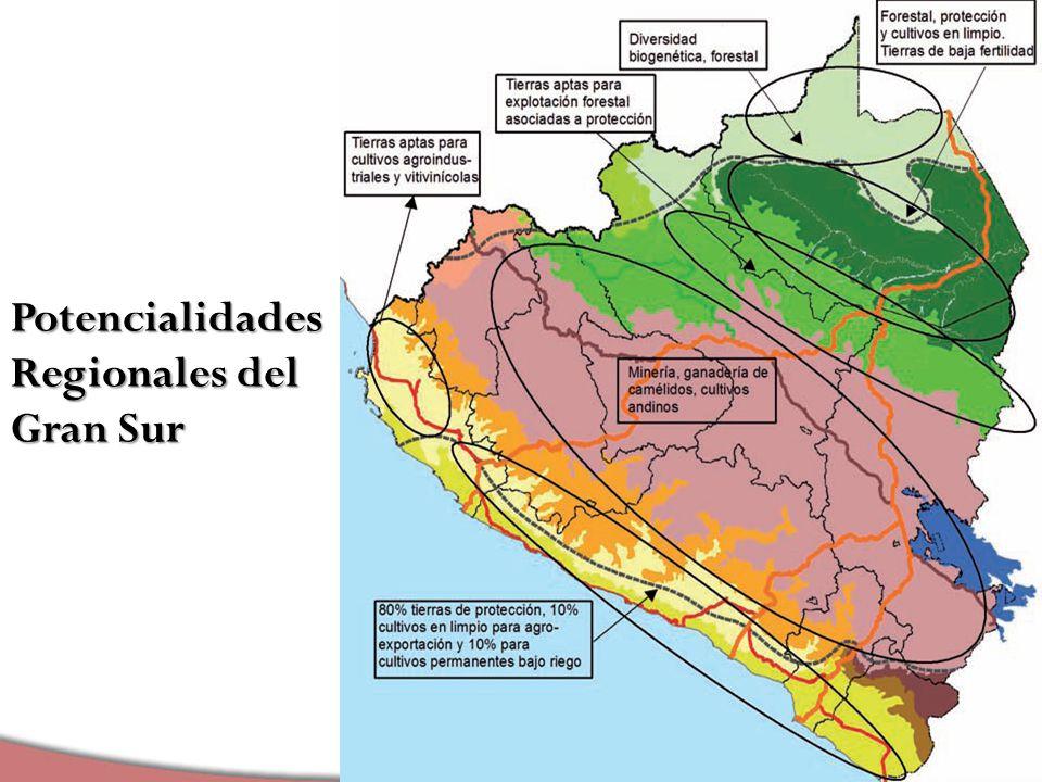Potencialidades Regionales del Gran Sur
