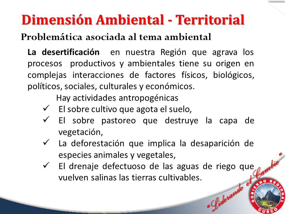 Dimensión Ambiental - Territorial