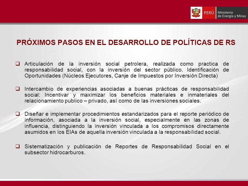 PRÓXIMOS PASOS EN EL DESARROLLO DE POLÍTICAS DE RS