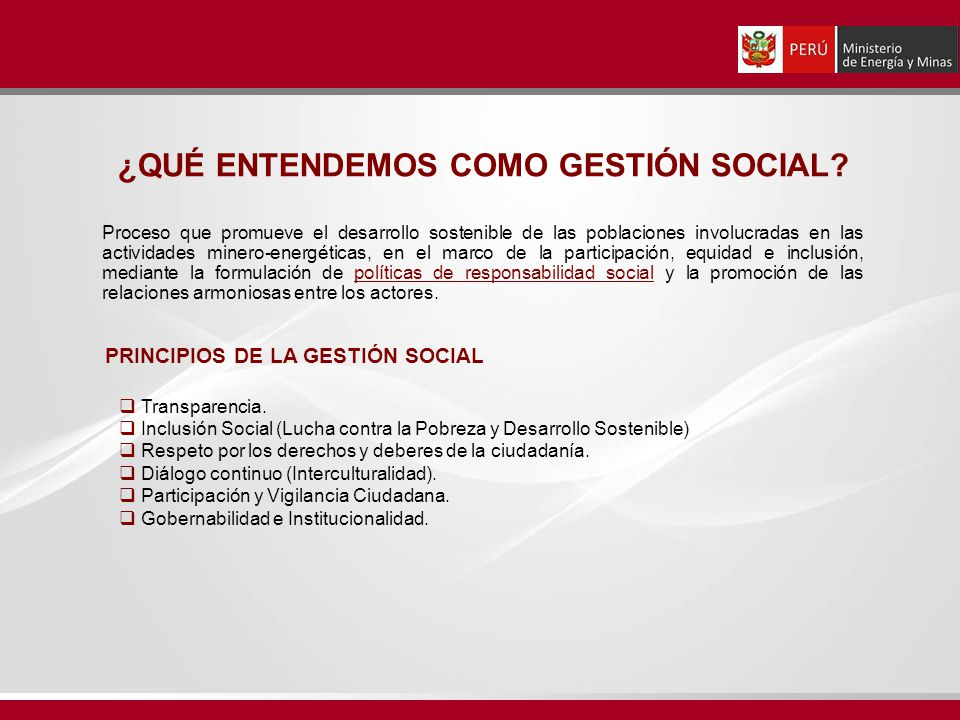 ¿QUÉ ENTENDEMOS COMO GESTIÓN SOCIAL PRINCIPIOS DE LA GESTIÓN SOCIAL