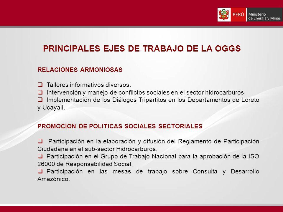 PRINCIPALES EJES DE TRABAJO DE LA OGGS