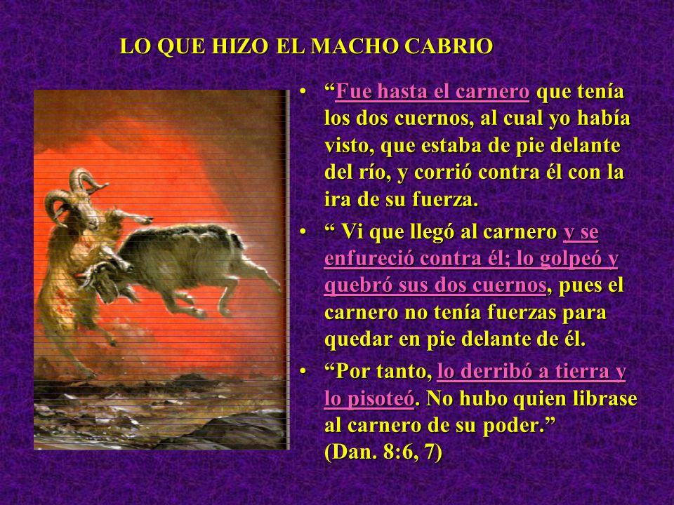 LO QUE HIZO EL MACHO CABRIO