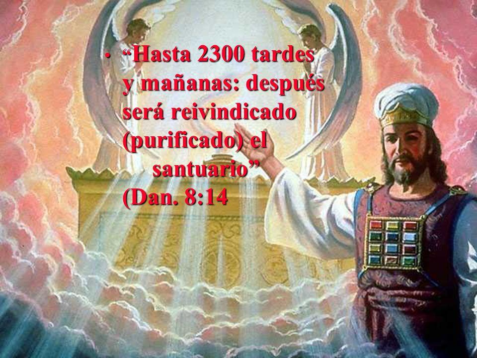 Hasta 2300 tardes y mañanas: después será reivindicado (purificado) el santuario (Dan. 8:14