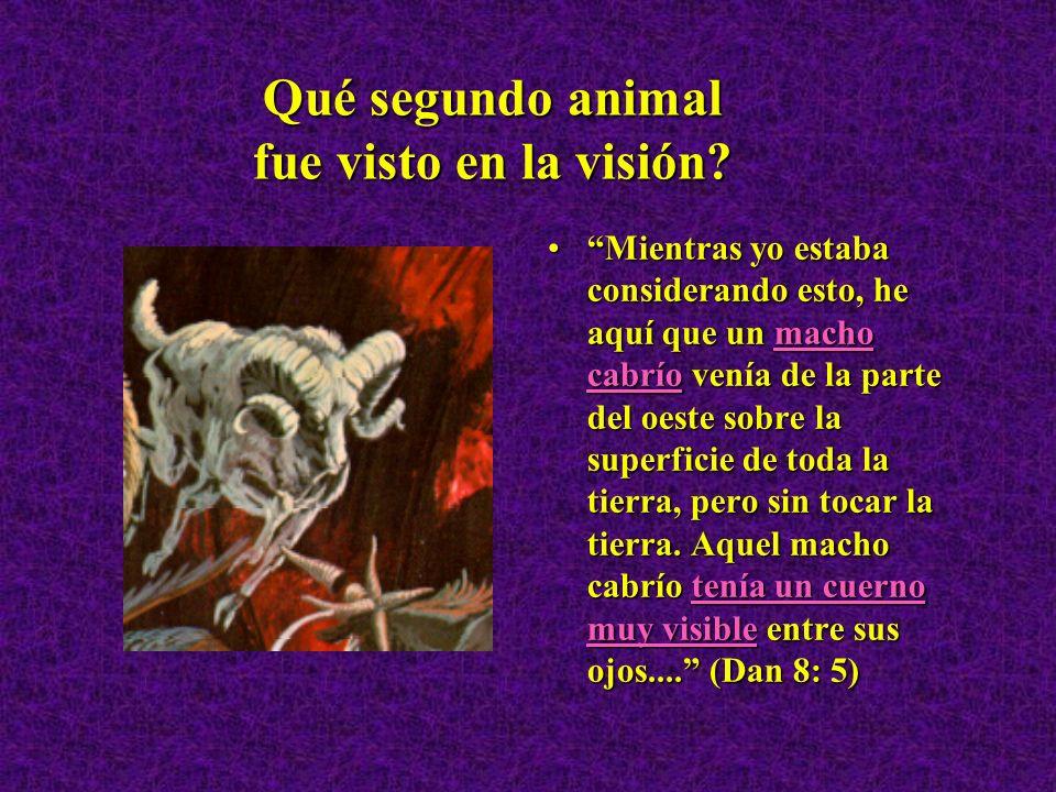 Qué segundo animal fue visto en la visión