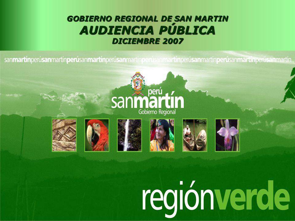 GOBIERNO REGIONAL DE SAN MARTIN