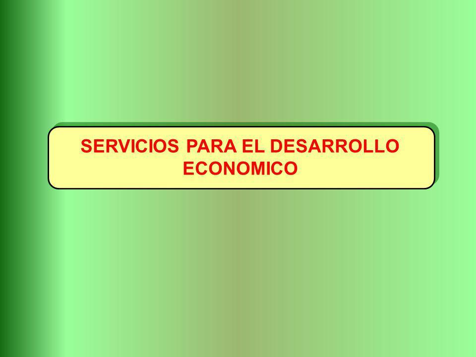 SERVICIOS PARA EL DESARROLLO ECONOMICO
