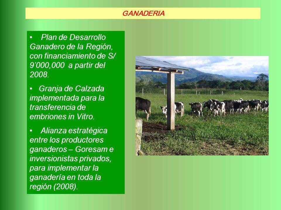 GANADERIA Plan de Desarrollo Ganadero de la Región, con financiamiento de S/ 9'000,000 a partir del 2008.