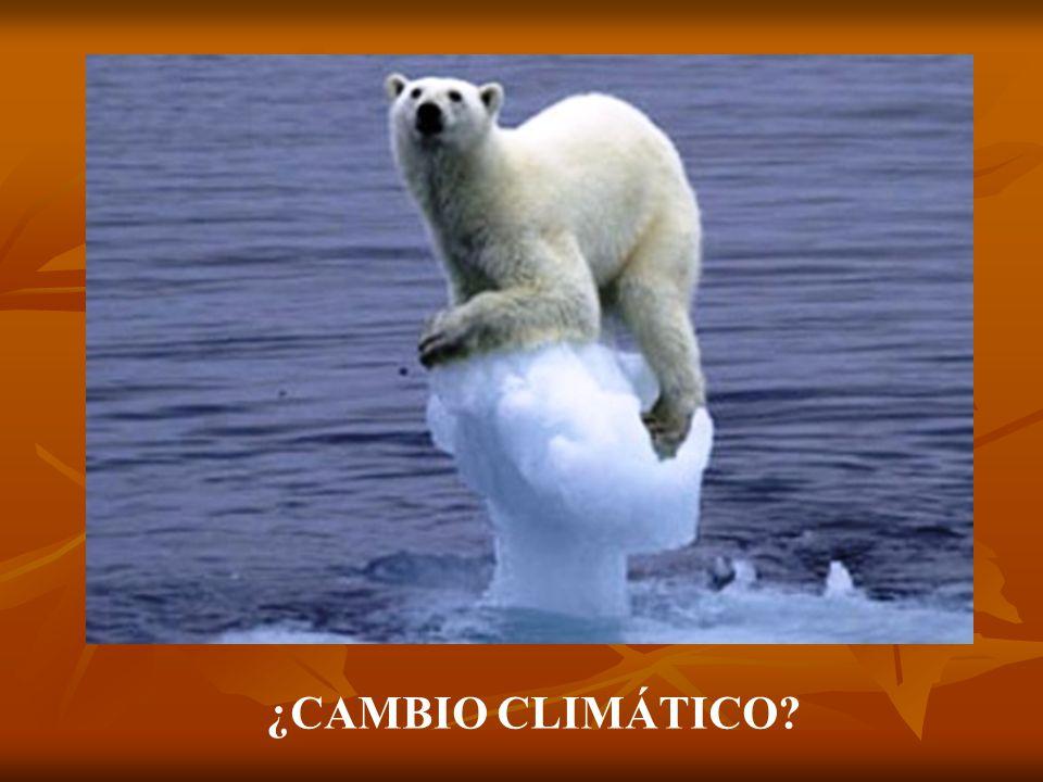 ¿CAMBIO CLIMÁTICO