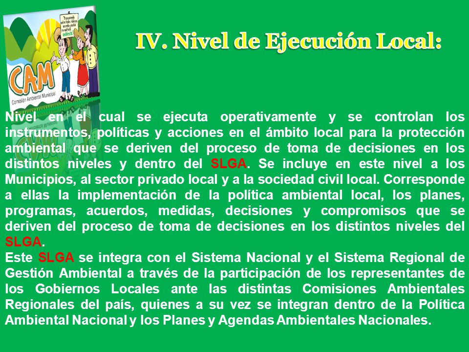 IV. Nivel de Ejecución Local: