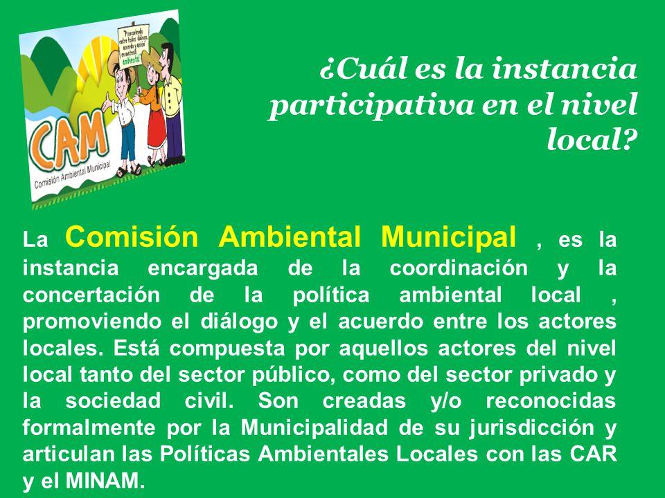 ¿Cuál es la instancia participativa en el nivel local