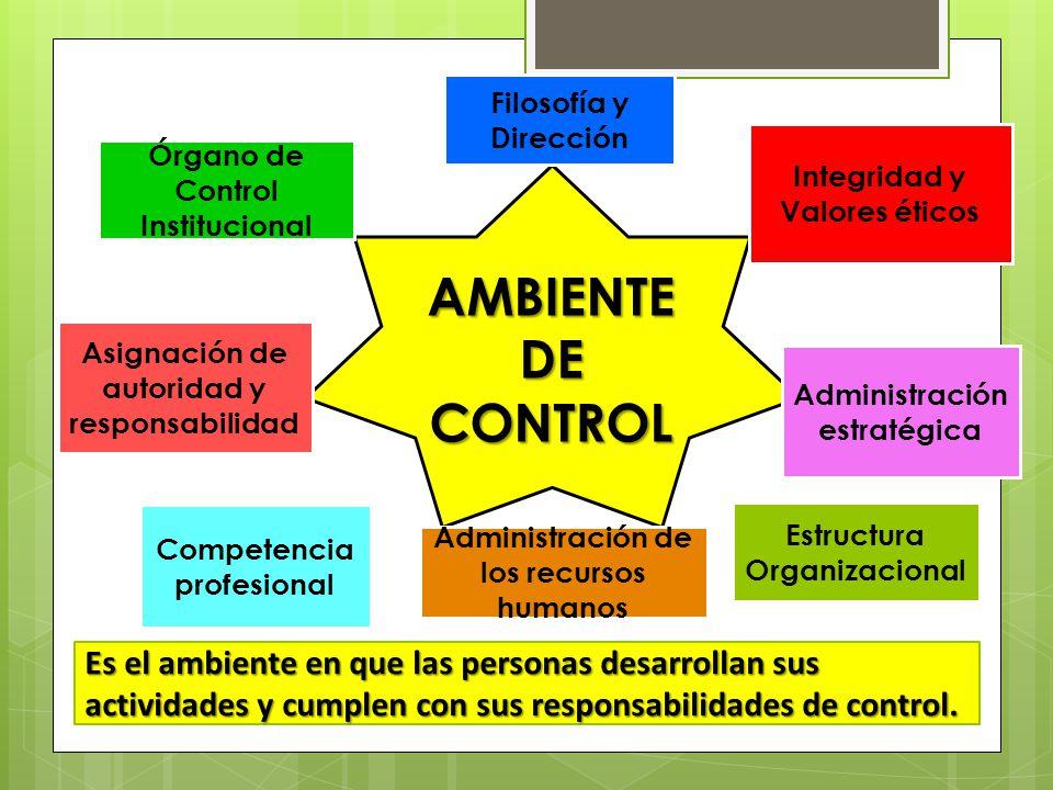 Control Institucional Asignación de autoridad y responsabilidad