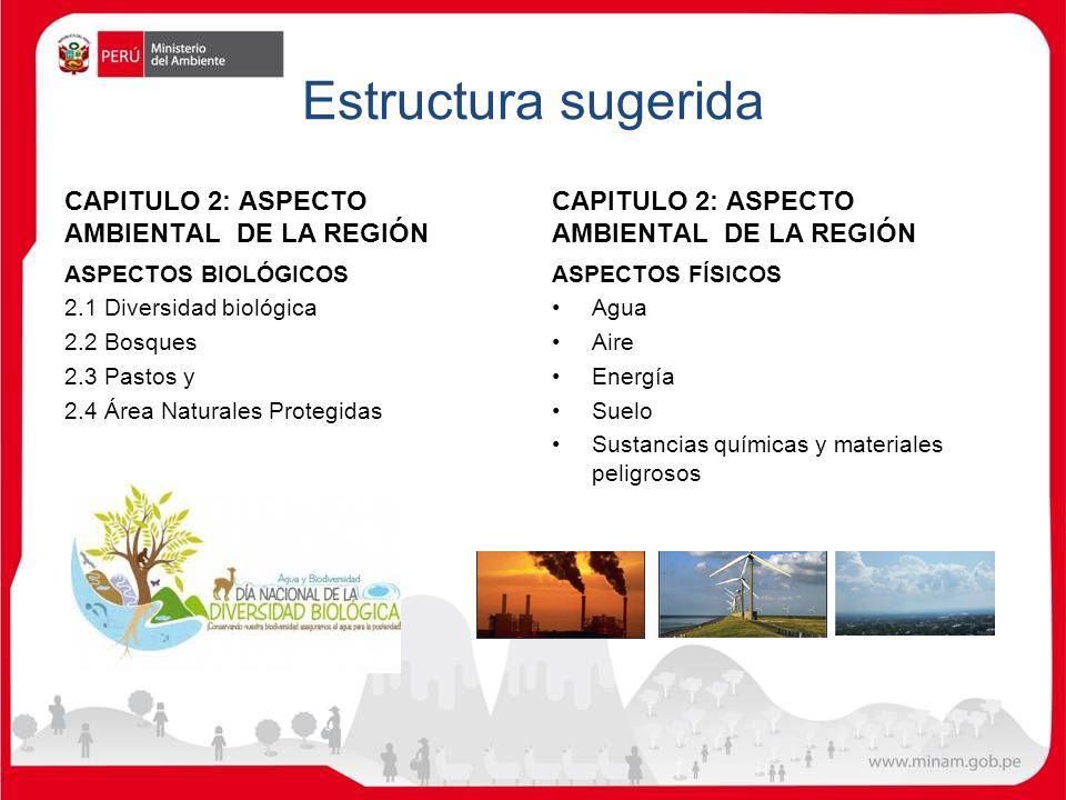 Estructura sugerida CAPITULO 2: ASPECTO AMBIENTAL DE LA REGIÓN
