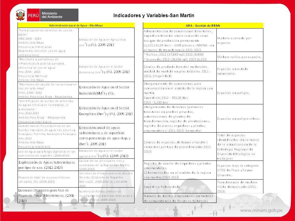 Indicadores y Variables-San Martin
