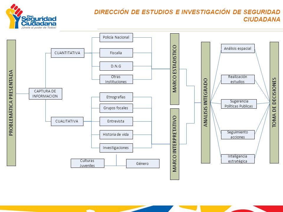 DIRECCIÓN DE ESTUDIOS E INVESTIGACIÓN DE SEGURIDAD CIUDADANA