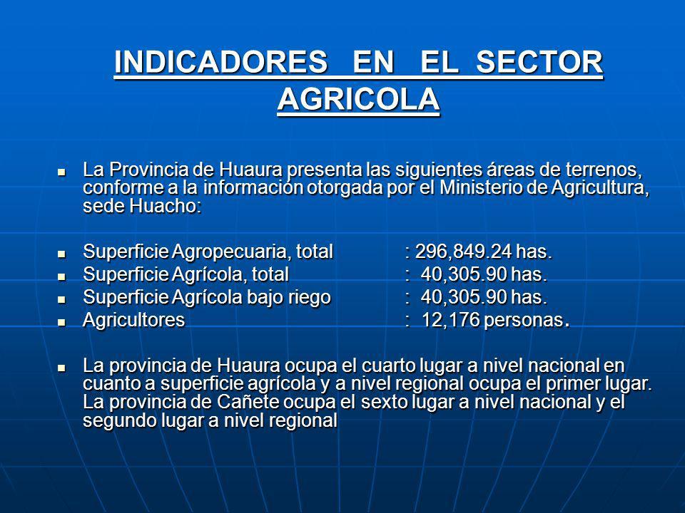 INDICADORES EN EL SECTOR AGRICOLA