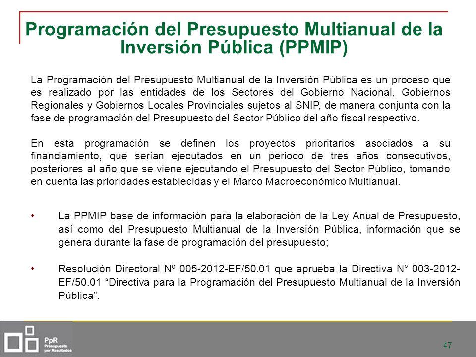 Programación del Presupuesto Multianual de la Inversión Pública (PPMIP)