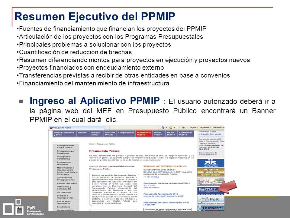 Resumen Ejecutivo del PPMIP