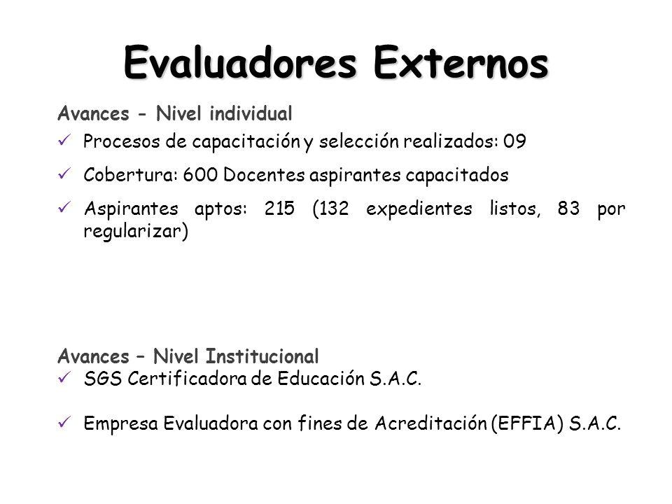 Evaluadores Externos Avances - Nivel individual