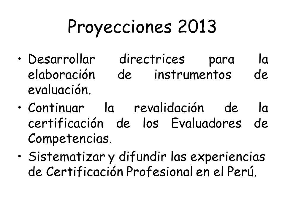 Proyecciones 2013 Desarrollar directrices para la elaboración de instrumentos de evaluación.